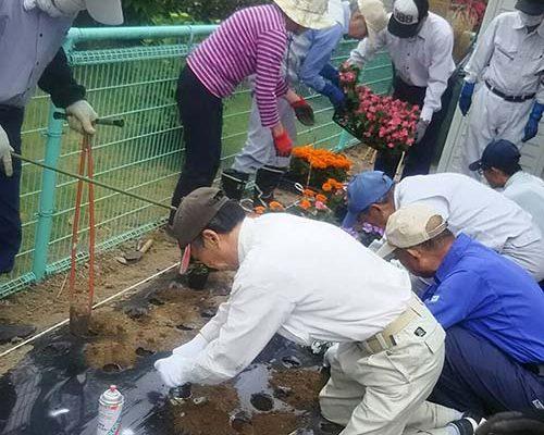 6/6 結田島公園内に5種類の花苗を植栽しました。