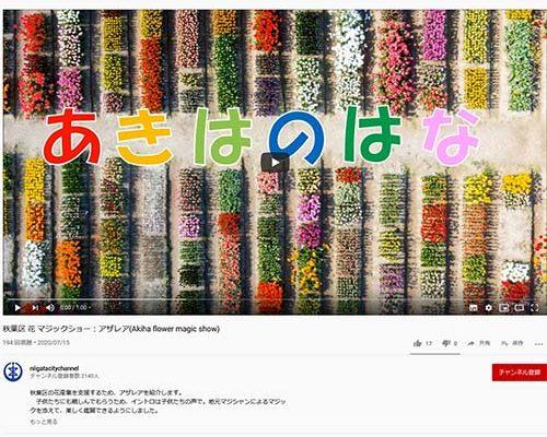 秋葉区の花卉.花木を広報した動画が出来ました。花は心を癒してくれます。
