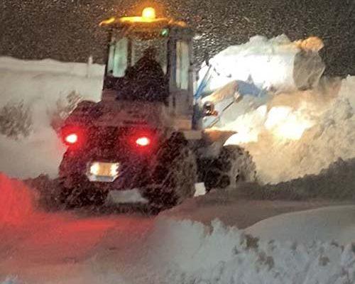 記録的な豪雪のなか、毎日雪との格闘、本当にお疲れ様です。